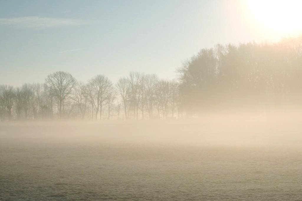 Wintermorgen_Pattensen_Reden_1