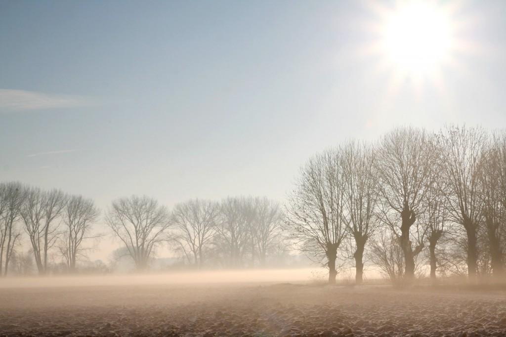 Wintermorgen_Pattensen_Reden_2