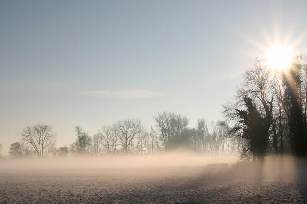 Wintermorgen_Pattensen_Reden_4